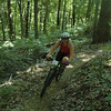 Beautiful singletrack at Brown County State Park during the 2007 Midwest Women's Mountain Bike Clinic