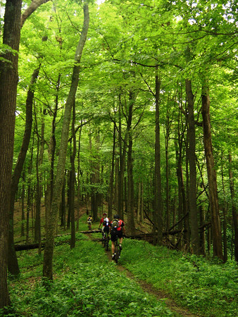 Three riders navigate a backcountry trail in the Hoosier National Forest.  Click to view photo album.