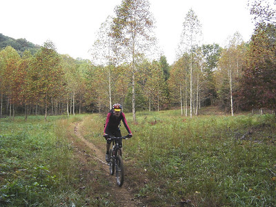 A fall morning mountain bike ride on a trail in Hickory Ridge in the Hoosier National Forest near Norman, IN.